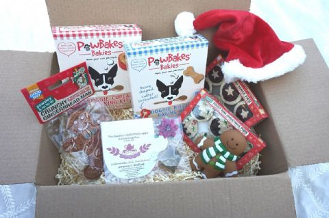 CHRISTMAS DOG TEA PARTY GIFT HAMPER WITH FESTIVE TREATS BAKING KITS HAT & TOY